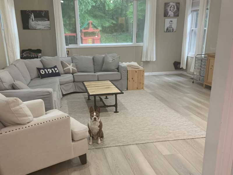 Vinyl plank floorling Moonlight white